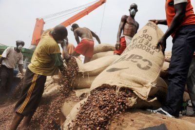 [Tribune] Côte d'Ivoire-Ghana : le cacao, ces fèves de la discorde